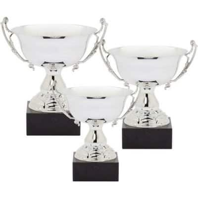 Shiny Silver Metal Cup Trophy