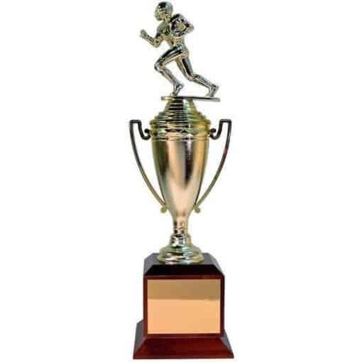 fantasy-trophy
