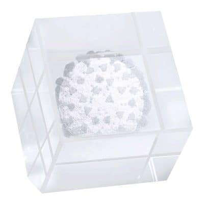 COVID-19 Clifton Cube Glass Award